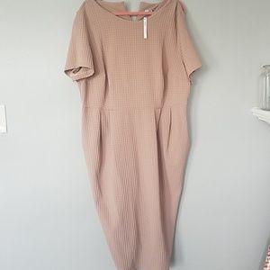 Light Tan Dress